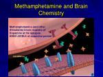 methamphetamine and brain chemistry86
