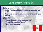 case study peru 4