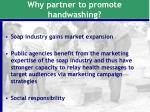 why partner to promote handwashing