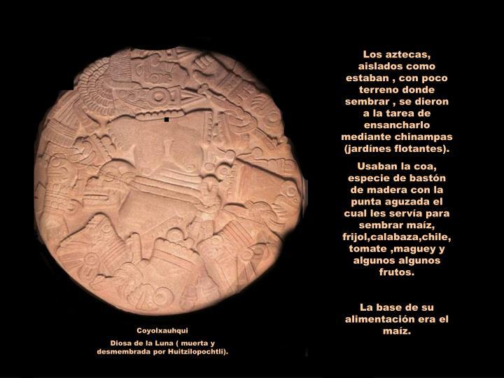 Los aztecas, aislados como estaban , con poco terreno donde sembrar , se dieron a la tarea de ensancharlo mediante chinampas (jardínes flotantes).