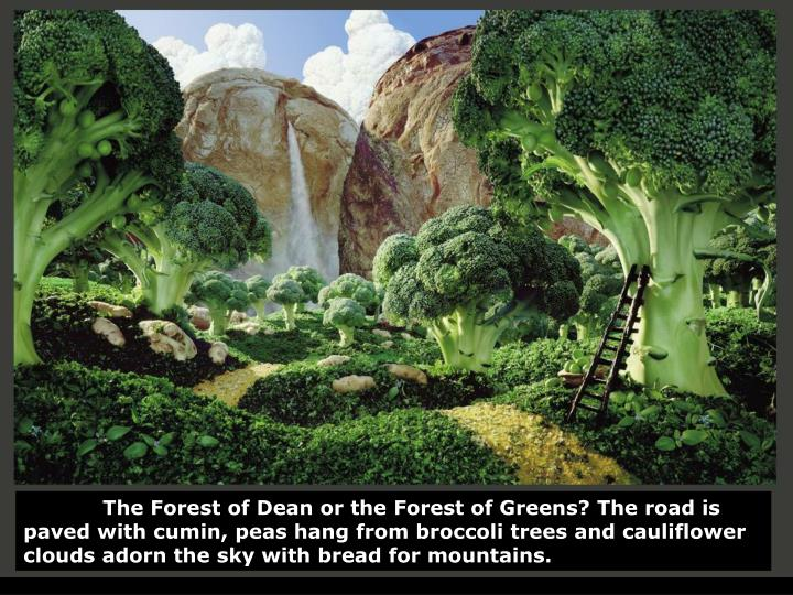 The Forest of Dean or the Forest of Greens? The road is paved with cumin, peas hang from broccoli tr...
