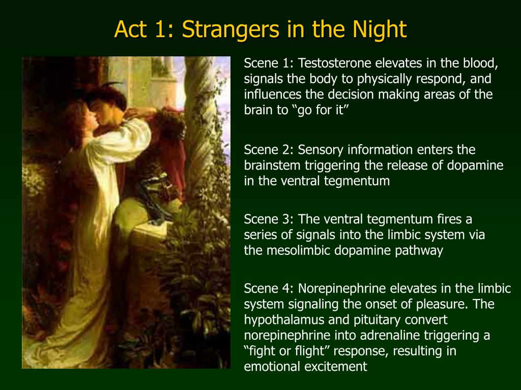 Act 1: Strangers in the Night