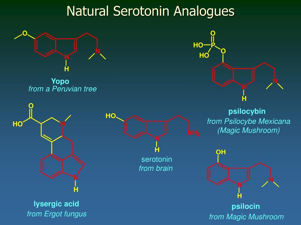 Natural Serotonin Analogues