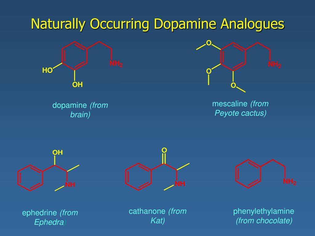 Naturally Occurring Dopamine Analogues