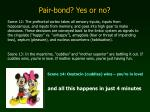 pair bond yes or no