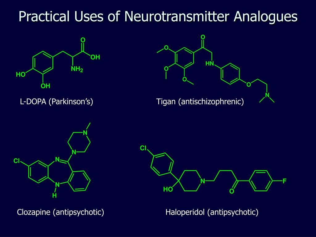 Practical Uses of Neurotransmitter Analogues