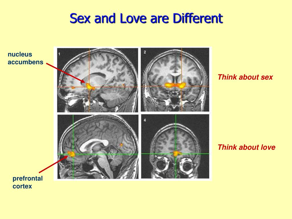 Sex and Love are Different