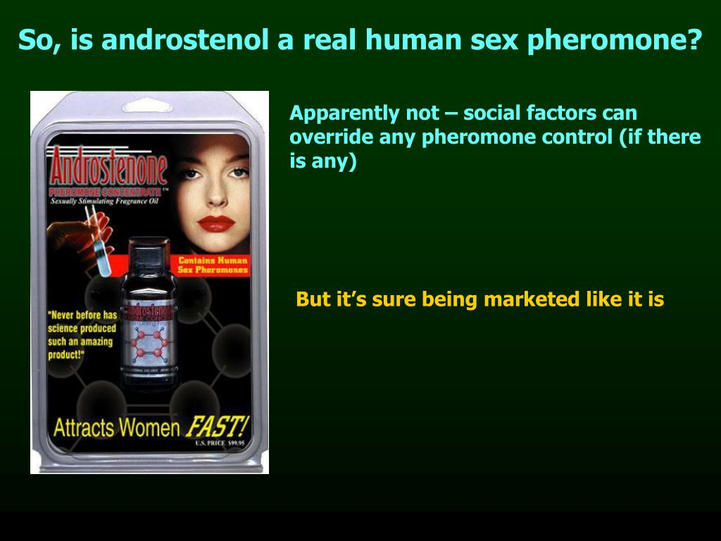 So, is androstenol a real human sex pheromone?