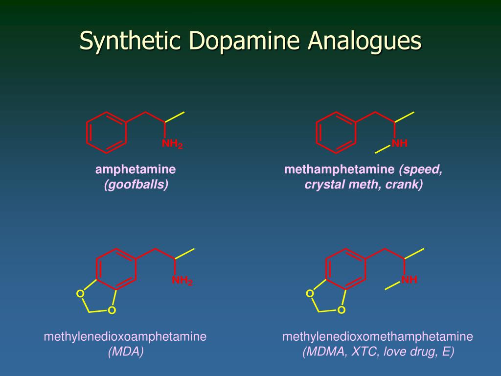 Synthetic Dopamine Analogues
