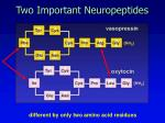 two important neuropeptides
