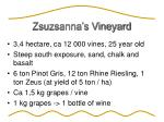 zsuzsanna s vineyard