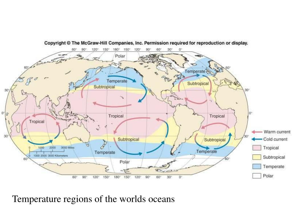 Temperature regions of the worlds oceans