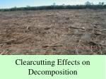 clearcutting effects on decomposition