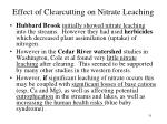 effect of clearcutting on nitrate leaching