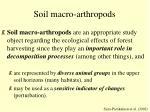 soil macro arthropods