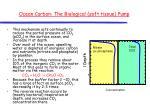 ocean carbon the biological soft tissue pump