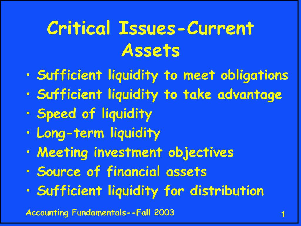 critical issues current assets l.