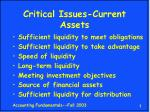 critical issues current assets