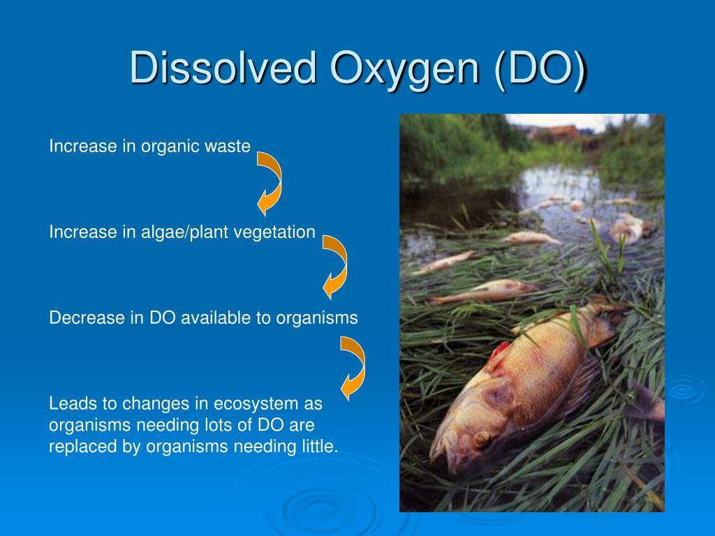 Increase in organic waste