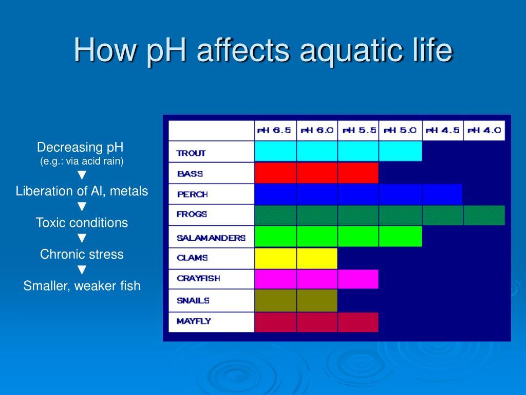 How pH affects aquatic life