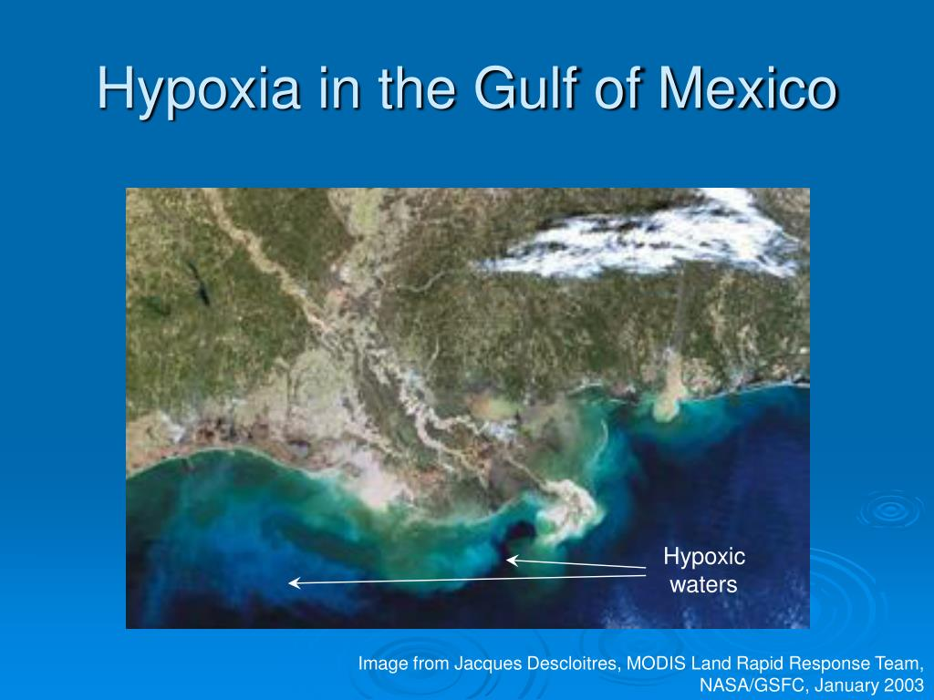 Hypoxia in the Gulf of Mexico
