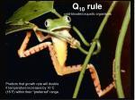 q 10 rule