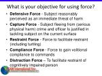 what is your objective for using force