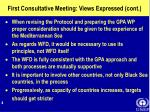 first consultative meeting views expressed cont