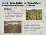 part 1 introduction to phytophthora ramorum and sudden oak death