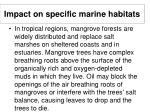 impact on specific marine habitats24
