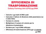 efficienza di trasformazione colony forming unit cfu g dna