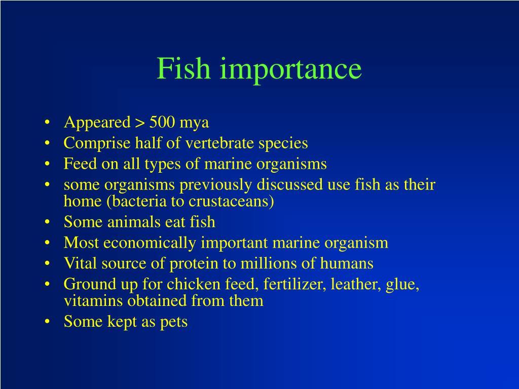 Fish importance