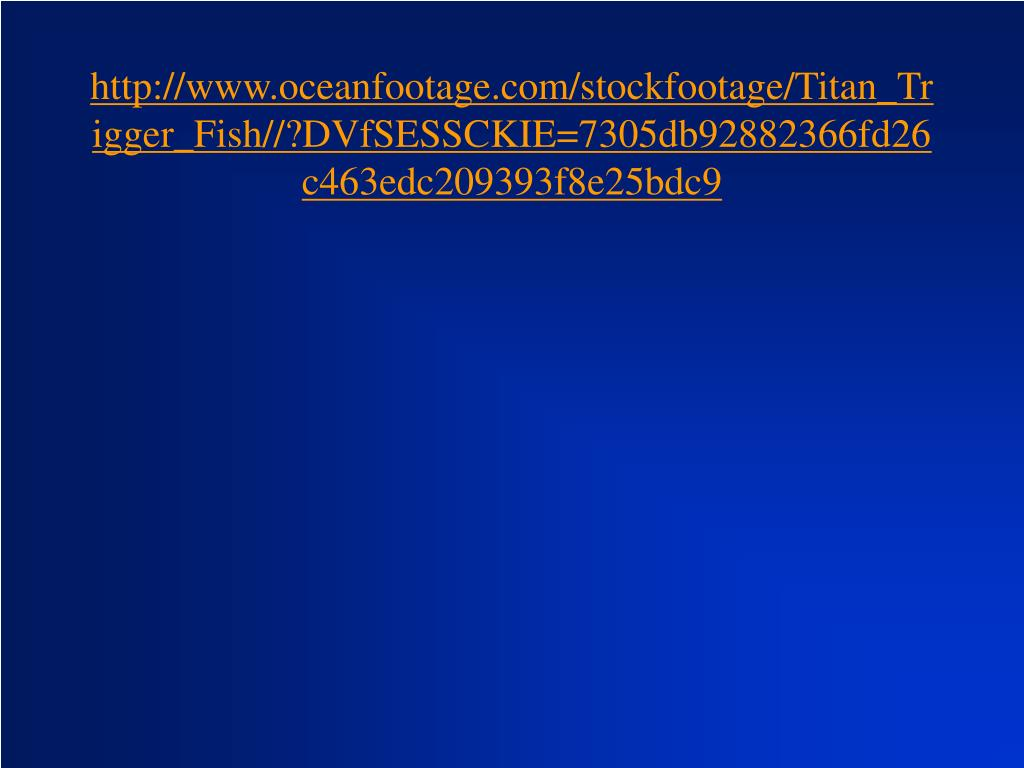 http://www.oceanfootage.com/stockfootage/Titan_Trigger_Fish//?DVfSESSCKIE=7305db92882366fd26c463edc209393f8e25bdc9
