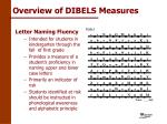 overview of dibels measures