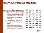 overview of dibels measures8