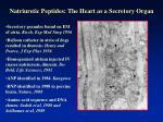 natriuretic peptides the heart as a secretory organ