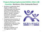 projects being implemented within ohio s 88 counties resiliency ohio statewide reach