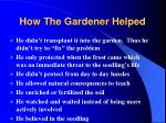 how the gardener helped