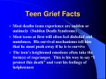 teen grief facts