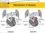 mechanism of disease21