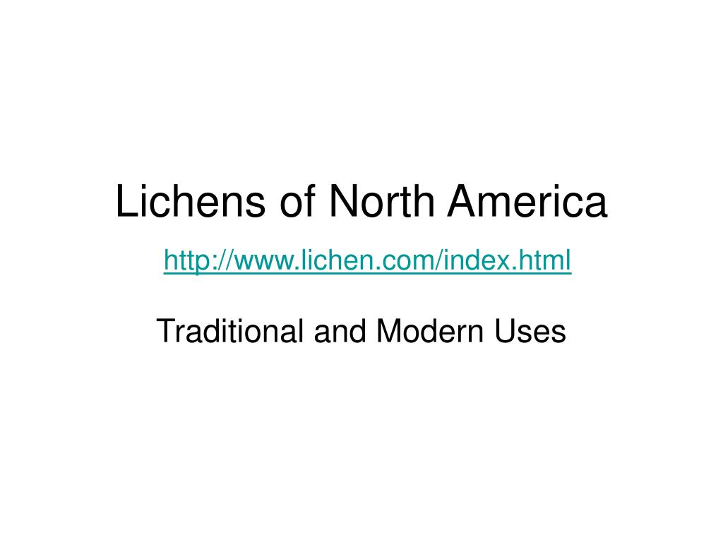lichens of north america http www lichen com index html l.