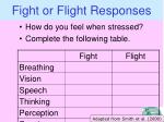 fight or flight responses
