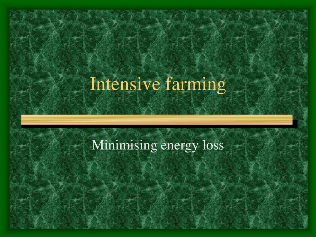 intensive farming l.