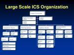 large scale ics organization