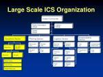 large scale ics organization17