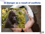 in danger as a result of conflicts11