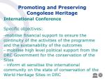 promoting and preserving congolese heritage37