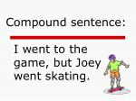 i went to the game but joey went skating