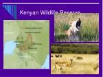 kenyan wildlife reserve