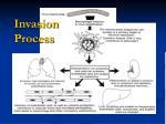 invasion process